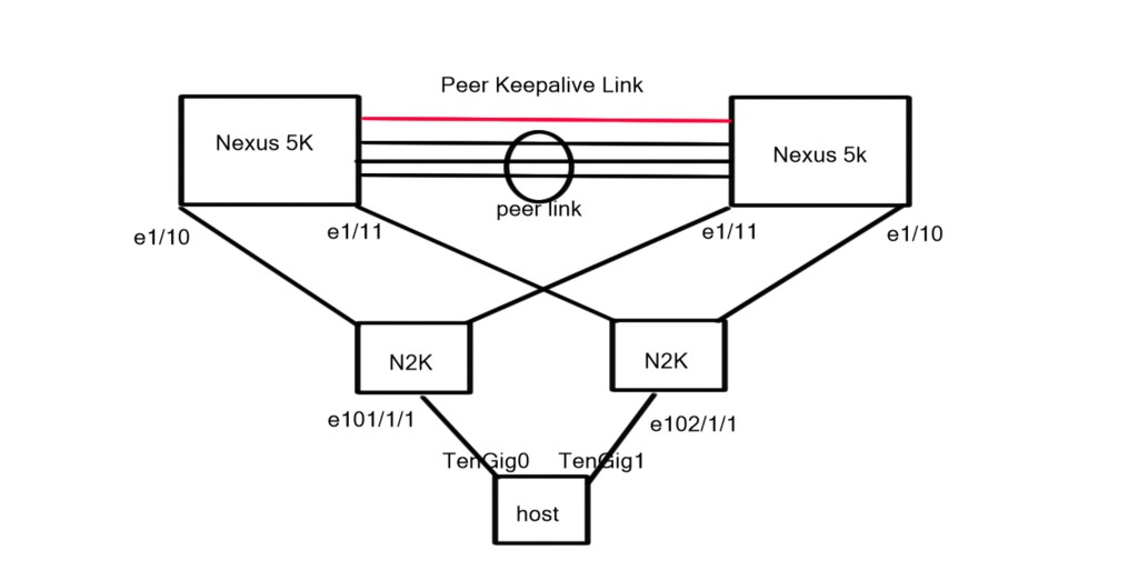 Physical diagram - Fabric Extenders and Parent switches