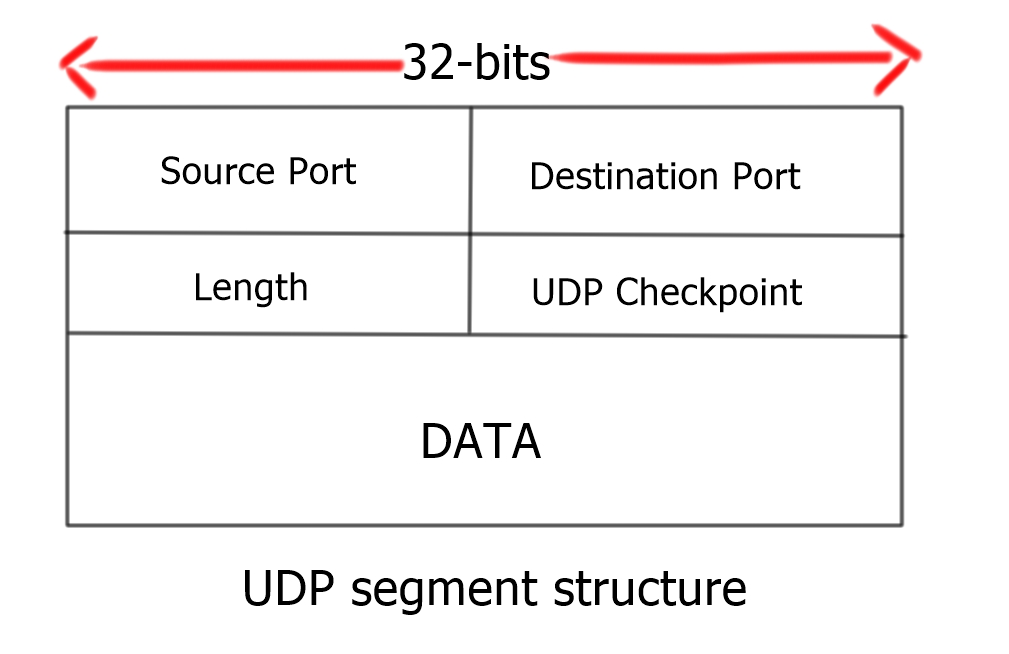 UDP and TCP Scans