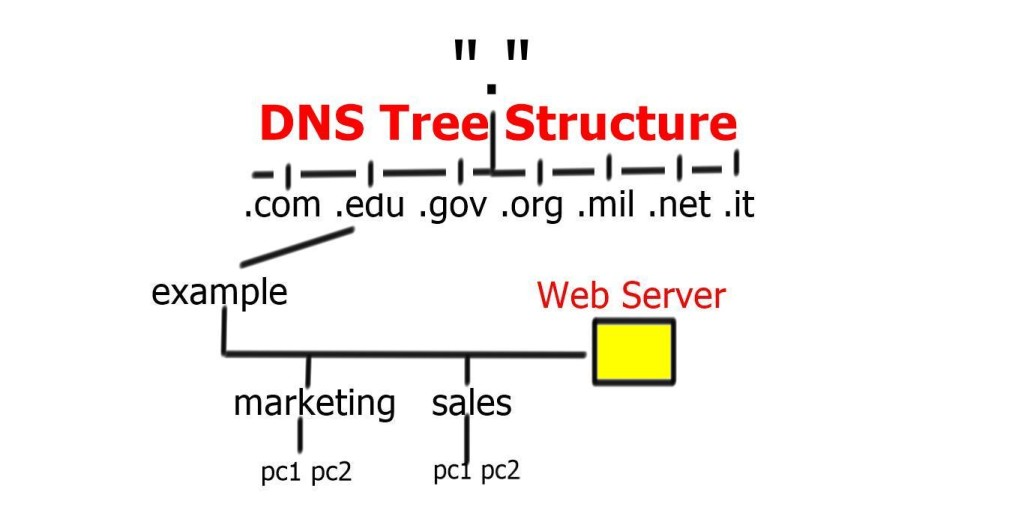 DNS Tree Structure