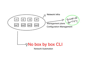 Network Automation and Configuration Management