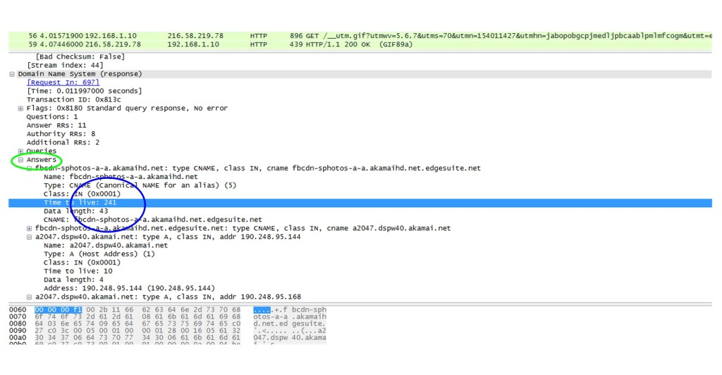DNS Packet Capture1